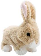 Інтерактивний Кролик