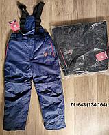 Полукомбинезон лыжный для девочек оптом, Taurus, 134-164 см,  № DL-643