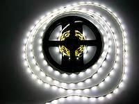 Светодиодная лента SMD 2835 60 LED/m IP20 Econom White , фото 1