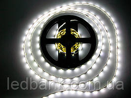 Светодиодная лента SMD 2835 60 LED/m IP20 Econom White