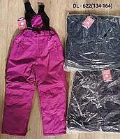 Полукомбинезон лыжный для девочек оптом, Taurus, 134-164 см,  № DL-622
