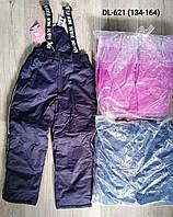 Полукомбинезон лыжный для девочек оптом, Taurus, 134-164 см,  № DL-621