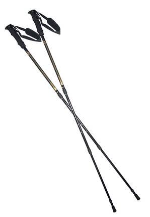 Палки для горного треккинга и нордической ходьбы NW ТК 19, фото 2