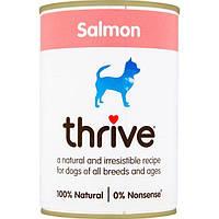 Thrive Dog Complete Лосось - Трайв Полнорационный Консервиров Влажный корм для Собак Лосось 375г
