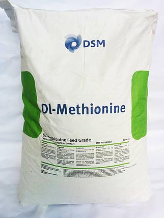 DL-Метионин 99 % (кормовой), доставка от 25 кг, фото 2