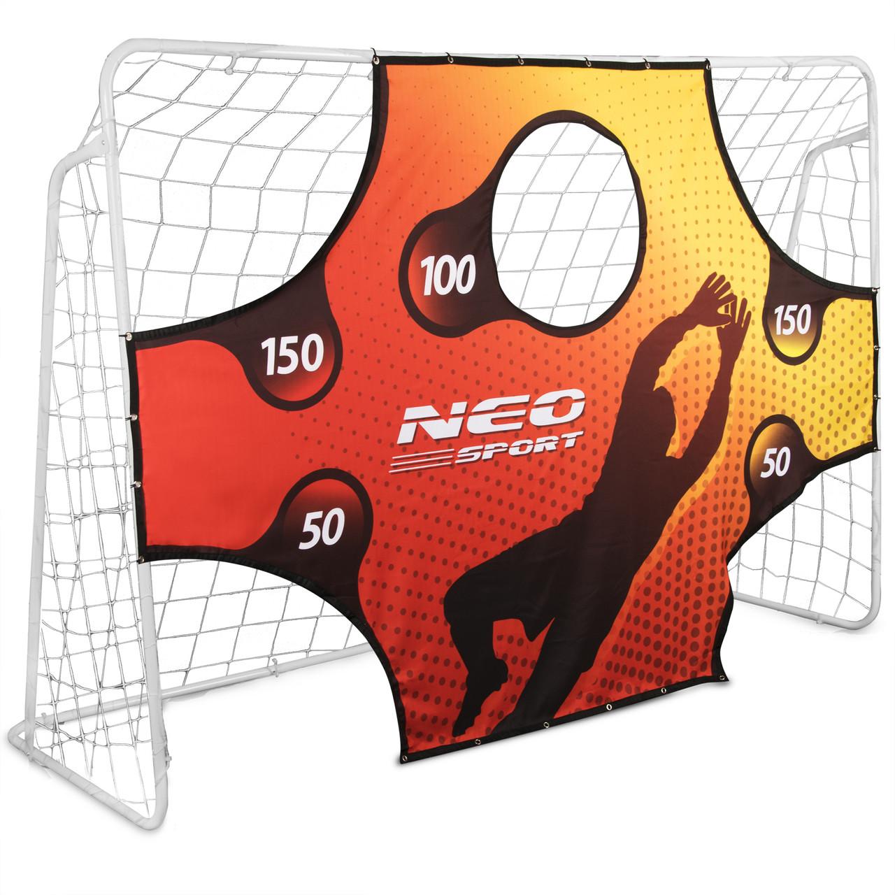 Футбольные ворота NS-453 300 x 200 x 120 cm с сеткой и экраном (9041)