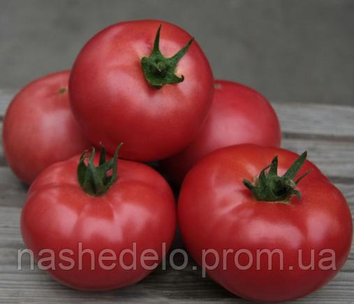 Семена томата Кибо F1 100 сем. Kitano