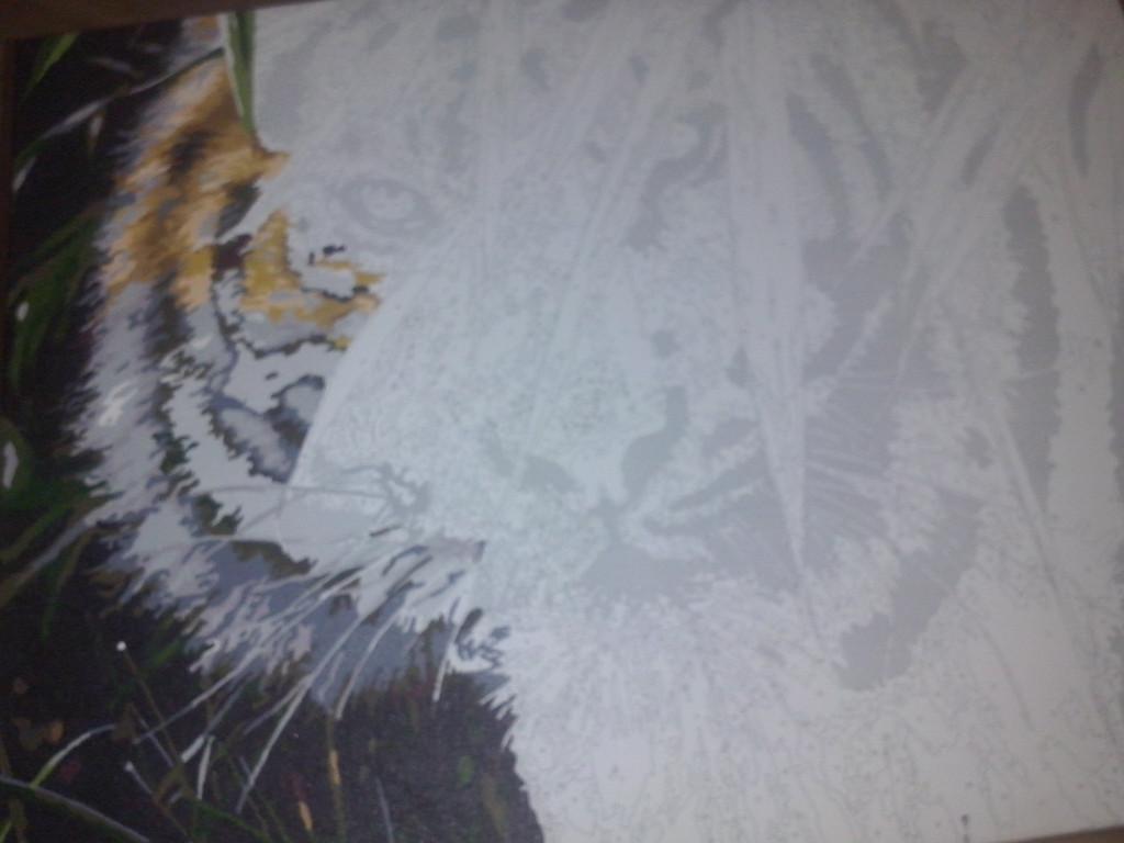 "Как рисовалась картина по номерам MENGLEI ""Амурский тигр"" MG1003 9"