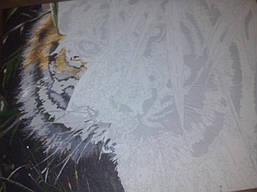 "Как рисовалась картина по номерам MENGLEI ""Амурский тигр"" MG1003 10"