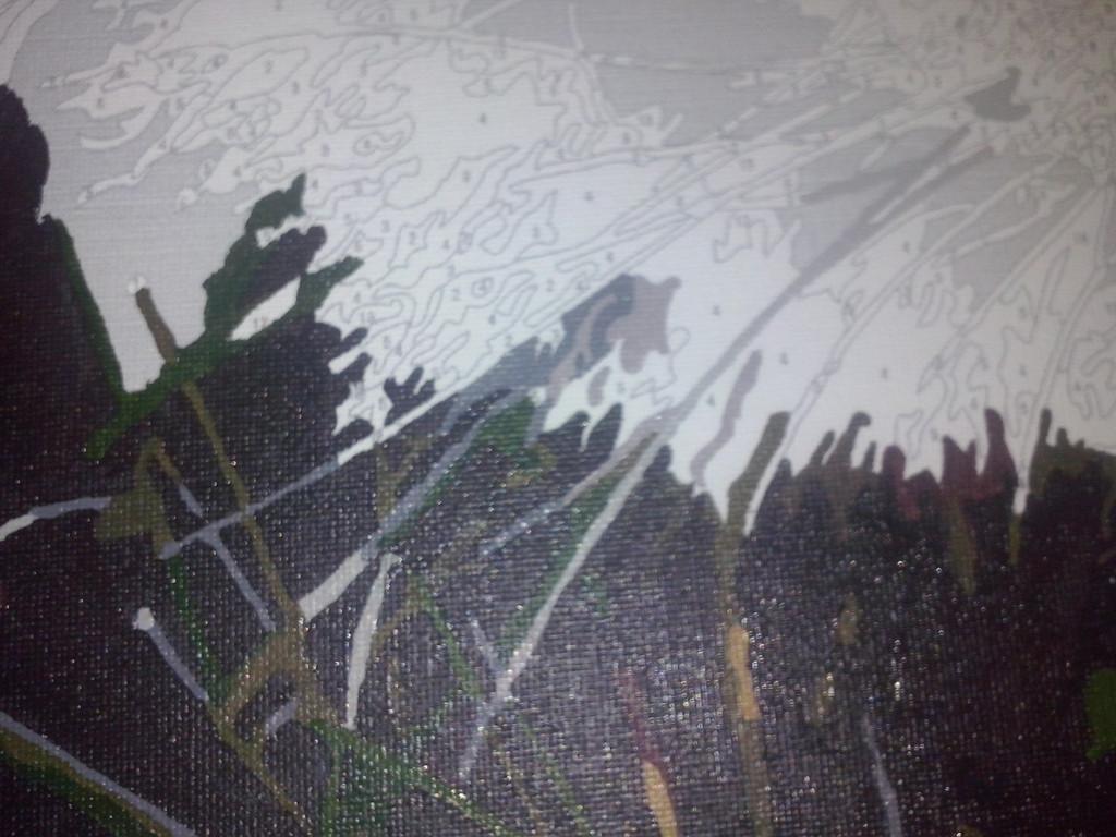 "Как рисовалась картина по номерам MENGLEI ""Амурский тигр"" MG1003 6"