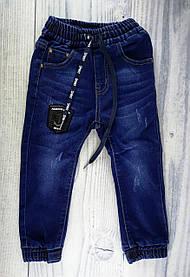 Штани для хлопчиків Синій В'єтнам 6 років, 116, Синій