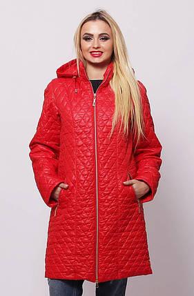 Стильная демисезонная женская  куртка красного цвета с 48 по 76 размер, фото 2
