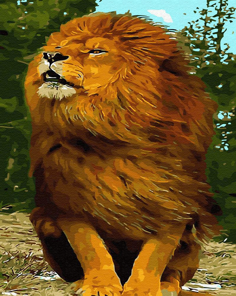 Картина по номерам Шикарный лев (BRM30079) 40 х 50 см