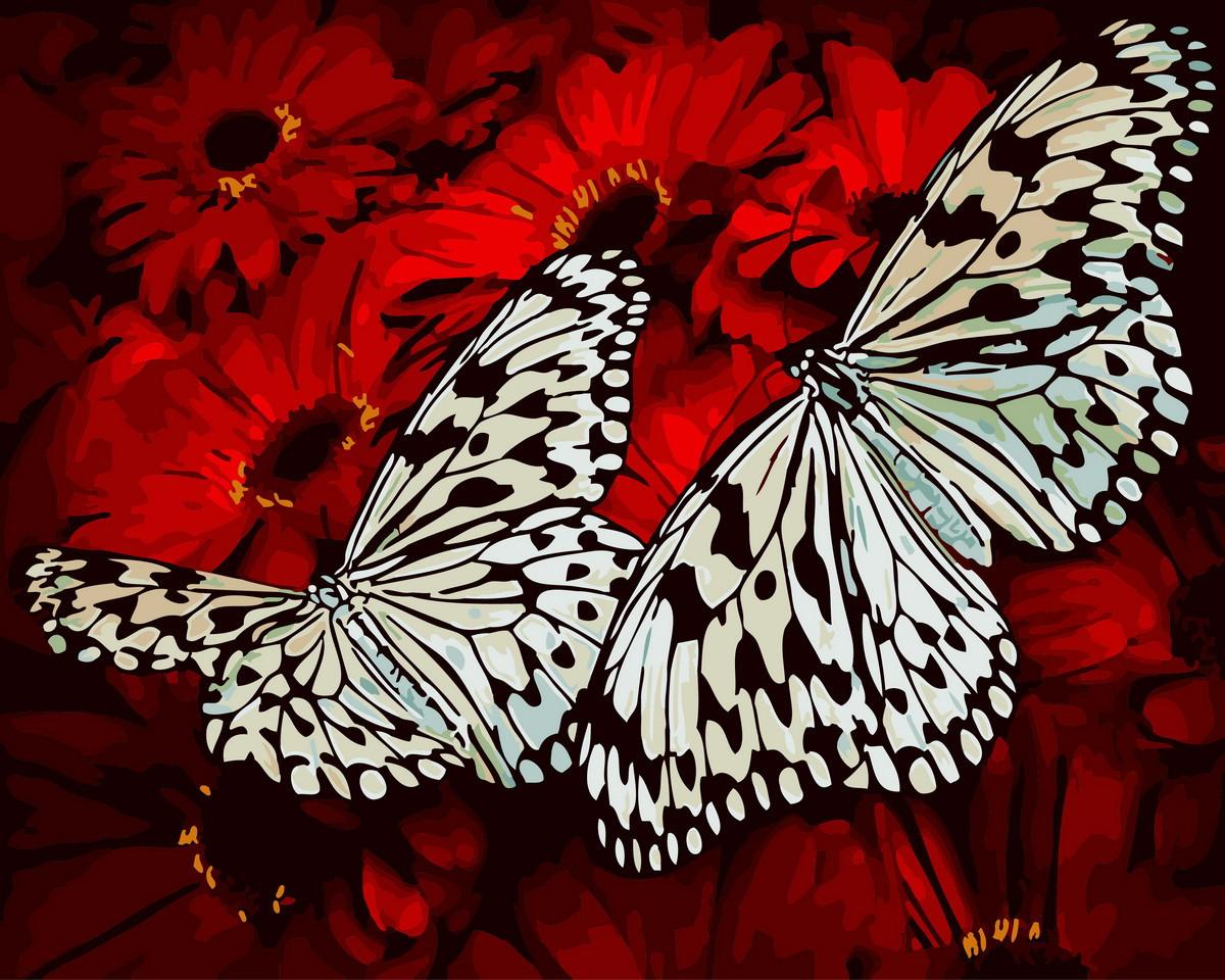 Рисование по номерам Бабочки на герберах (BRM29432) 40 х 50 см Brushme