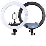 Светодиодная лампа кольцо на штативе RL-12, фото 2