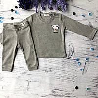 Серый костюм на мальчика Breeze 214. Размер 74 см (9мес), 80 см, 86 см, 92 см (2 года), 98 см (3 года), фото 1