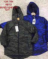 Куртки утепленные для мальчиков  134/164 см