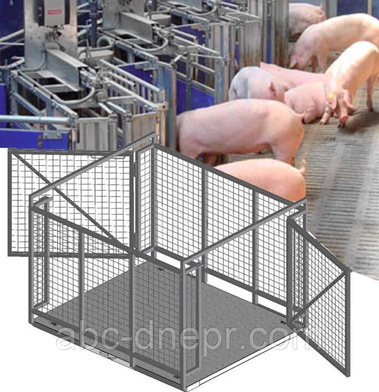 Ваги для тварин 600 кг