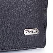 Мужской кожаный кошелек CANPELLINI (КАНПЕЛЛИНИ) SHI1101-7, фото 3