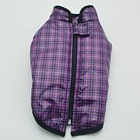 Жилет для собак Клетка фиолетовый