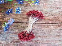 Тычинки мелкие, матовые, цвет бордовый, 100 нитей, 200 головок