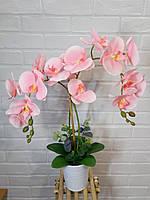Орхидея розовая двойная в белой керамике