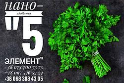 Рынок зелени в Украине: перспективы и как добиться большего