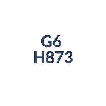G6 H873