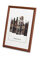 Фоторамка из дерева Дуб 1,5 см.(средне-коричневая) - для грамот, дипломов, сертификатов, фото!, фото 1