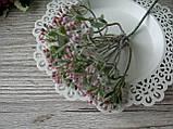 Веточка полыни розовой- 15 грн (5 веточек 4 см на стебле), фото 2