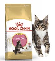 Сухой корм Royal Canin MAINECOON KITTEN Роял Канин для котят породы мейн кун 400 гр
