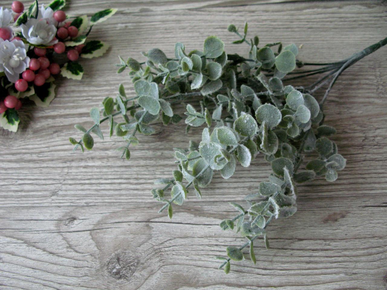 Веточка эвкалипта мятная (малая) - 40 грн (5 веточек 14 см)