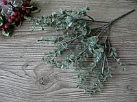 Веточка эвкалипта (средняя) - 55 грн (5 веточек кончик одной отломан))