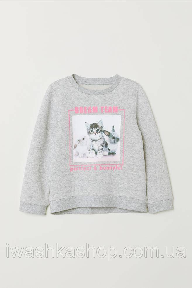 Теплый серый свитшот с принтом на девочек 2 - 4 лет, р. 98 - 104, H&M
