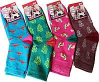 Носки детские махровые ассорти цветные 20 р. (30-32)