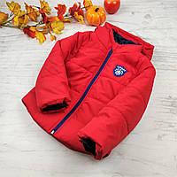Куртки детские оптом (4 шт) на синтепоне демисезон осень, 116-134