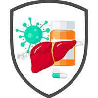 Препараты для лечения печени животных (Гепатопротекторы)