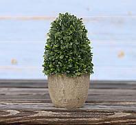Самшит- конус искусственный в горшке зеленый полистоун h14см 3331200-1 конус