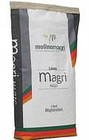 Смесь активная (закваска сухая) Molino Magri 10кг