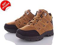 Стильные мужские ботинки р 40-45 (код 2194-00)