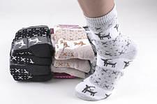 Женские махровые носки (теплые)