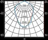 Світлодіодний прожектор Vela LED 50Вт 6400К 4600Лм, IP65, фото 3