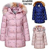 Куртка утепленная для девочек оптом, Glo-story, 134-164 см,  № GMA-8498, фото 1