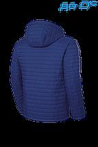 Куртка демисезонная Braggart - 1295B, фото 3