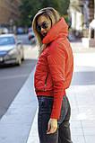 Куртка женская / плащевка, синтепон 150 / Украина 44-0173, фото 5