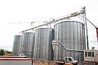 Металлические силосы для зерна с плоским и конусным дном, Германия, фото 4