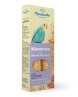 Колосок для птиц Бисквит Сузирье, минимальный заказ 2 шт