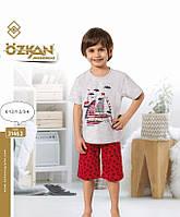 Комплект  домашний футболка и шорты  для мальчиков  1-4года