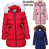 Курточка утеплена для дівчаток Glo-Story оптом, 134-164 рр. Артикул: GMA8494