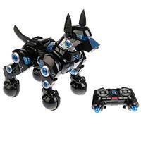 Интерактивная собака на пульте Робот Rastar DOGO Умная собака 77900